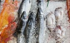 市场关停、销量暴跌,数十万海鲜从业者面临最难熬的夏天……