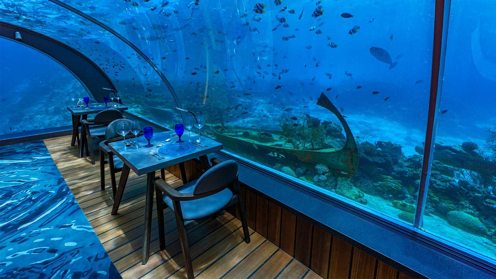 盘点世界各地海底餐厅:让食客接近海洋是怎样一门生意